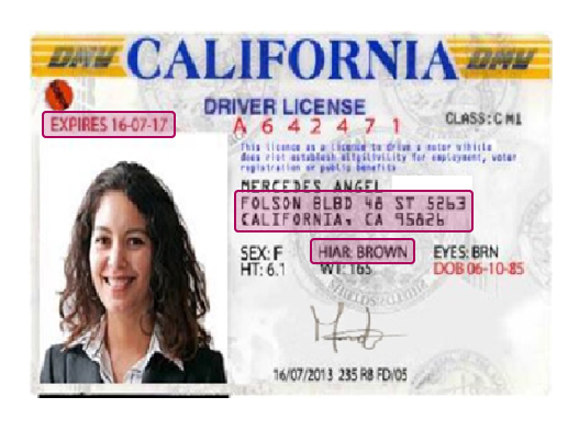 Digitally altered driver's license